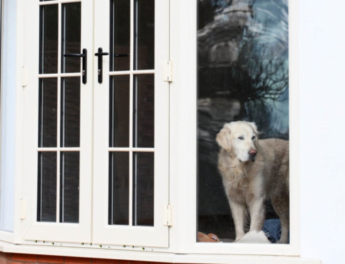 Handy tips to clean your windows